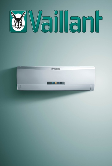 term_vaillant_a_390x580